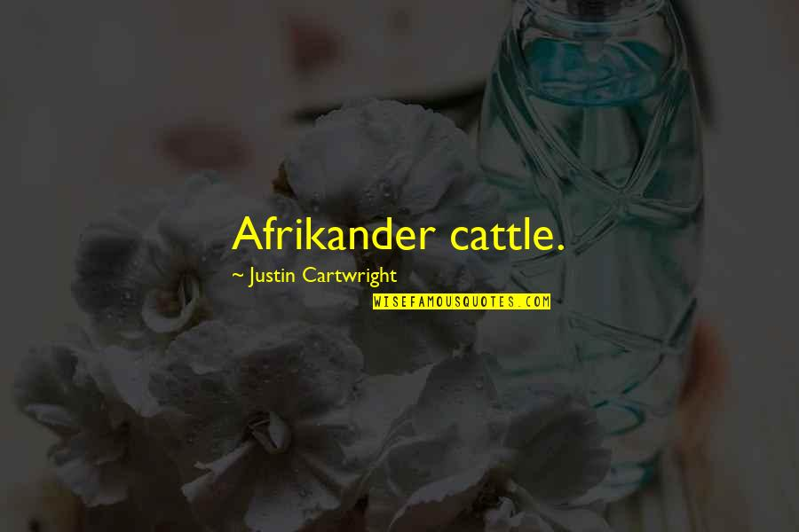 Cartwright Quotes By Justin Cartwright: Afrikander cattle.
