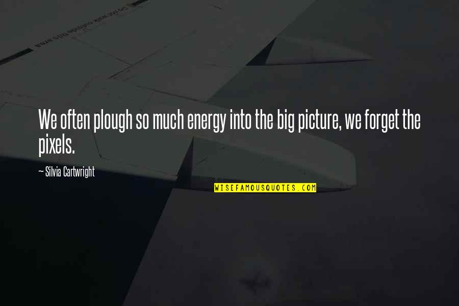 Cartwright Quotes By Silvia Cartwright: We often plough so much energy into the