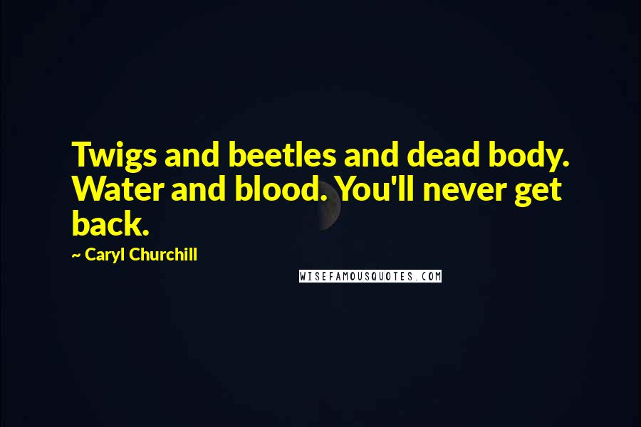 Caryl Churchill quotes: Twigs and beetles and dead body. Water and blood. You'll never get back.