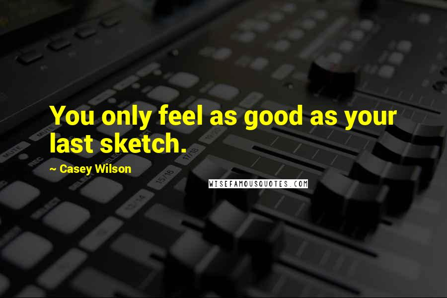 Casey Wilson quotes: You only feel as good as your last sketch.