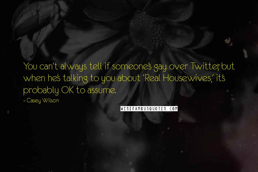 Casey Wilson quotes: You can't always tell if someone's gay over Twitter, but when he's talking to you about 'Real Housewives,' it's probably OK to assume.