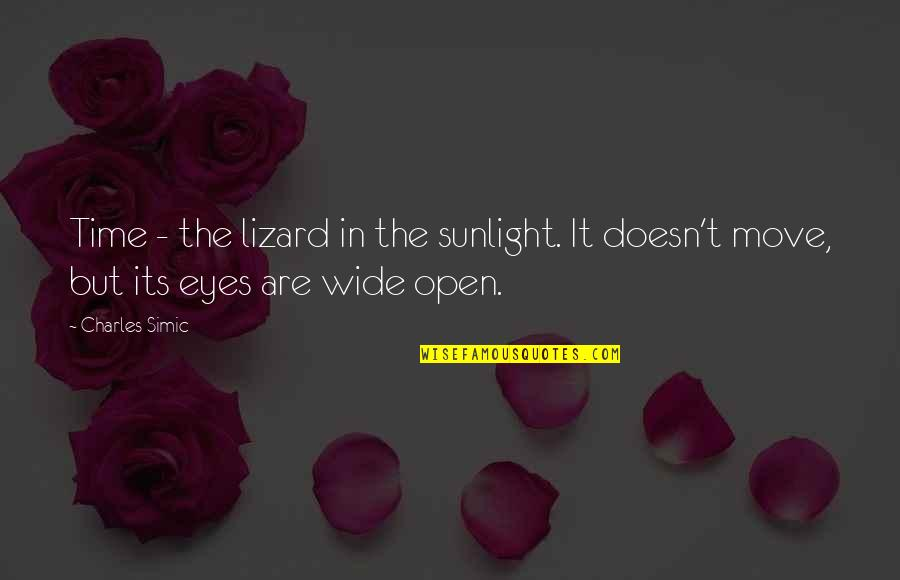 Cask Of Amontillado Mood Quotes By Charles Simic: Time - the lizard in the sunlight. It