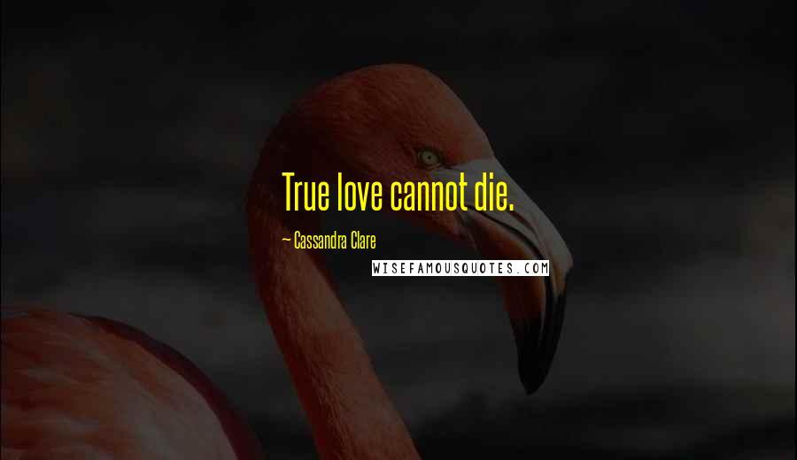Cassandra Clare quotes: True love cannot die.