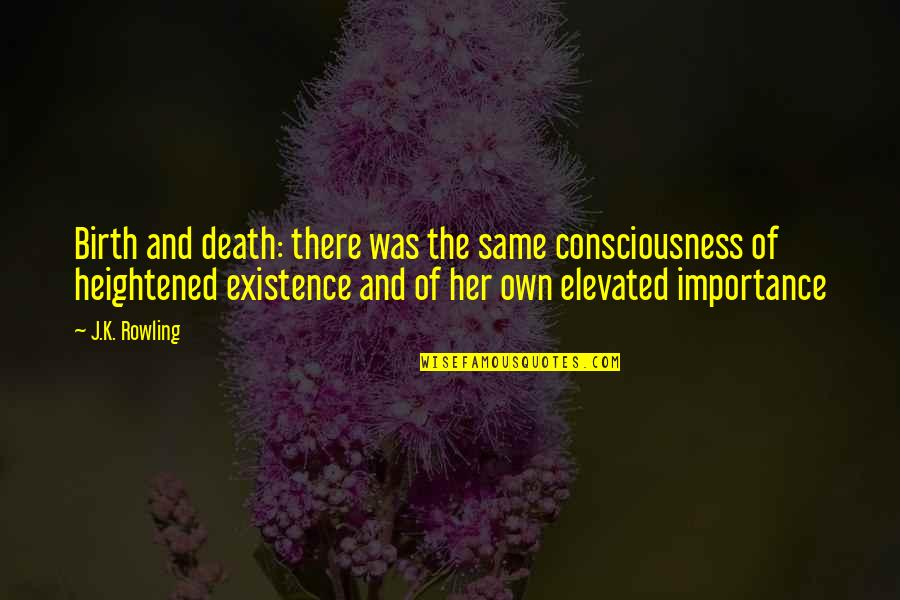 Casual Quotes By J.K. Rowling: Birth and death: there was the same consciousness