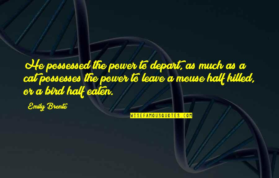 Cat And Mouse Quotes By Emily Bronte: He possessed the power to depart, as much