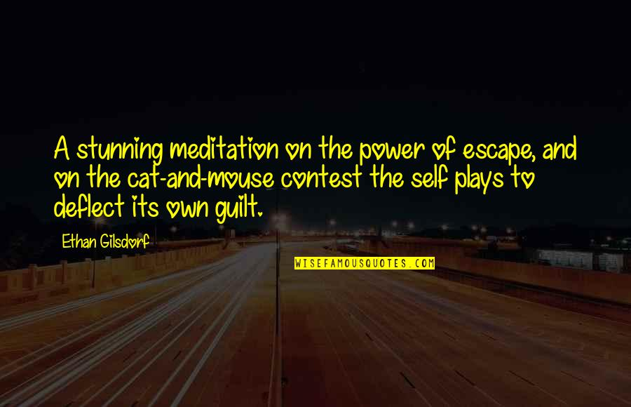 Cat And Mouse Quotes By Ethan Gilsdorf: A stunning meditation on the power of escape,