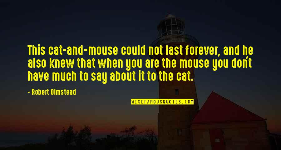 Cat And Mouse Quotes By Robert Olmstead: This cat-and-mouse could not last forever, and he