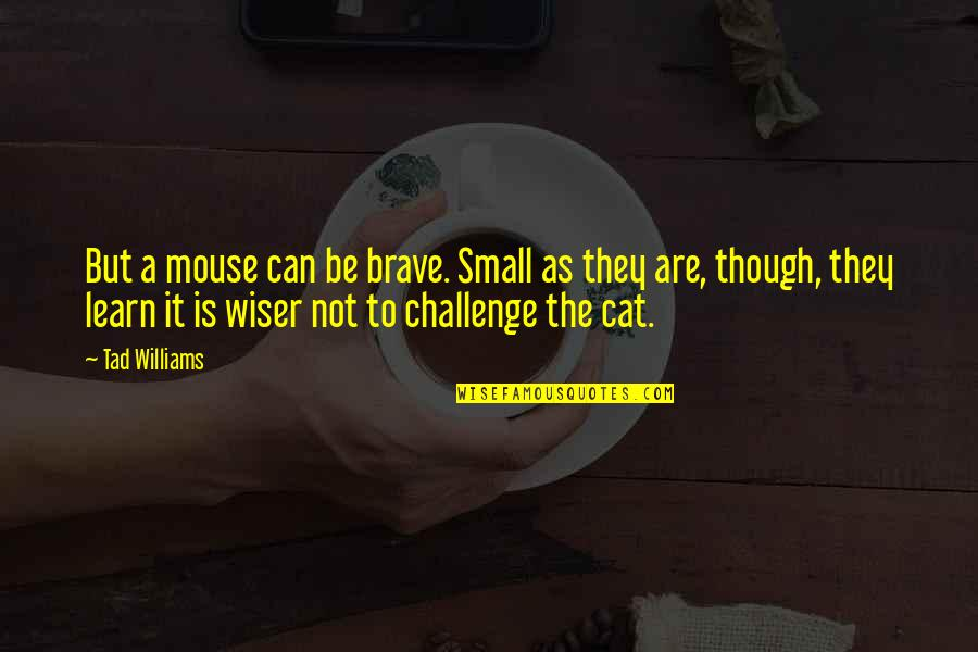 Cat And Mouse Quotes By Tad Williams: But a mouse can be brave. Small as