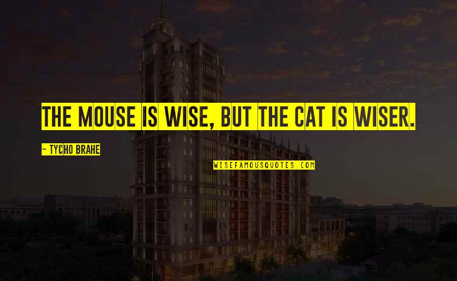 Cat And Mouse Quotes By Tycho Brahe: The mouse is wise, but the cat is