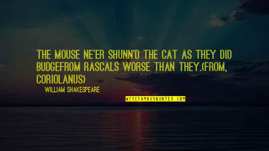 Cat And Mouse Quotes By William Shakespeare: The mouse ne'er shunn'd the cat as they
