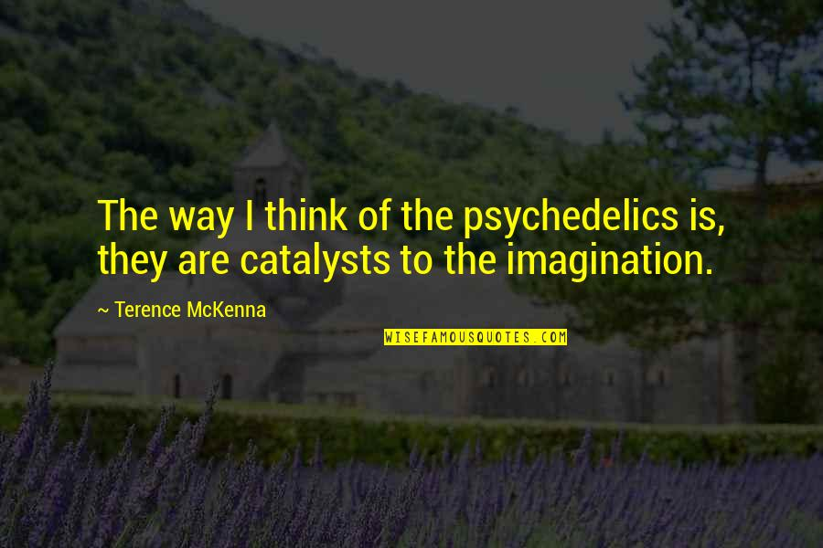 Catalysts Quotes By Terence McKenna: The way I think of the psychedelics is,