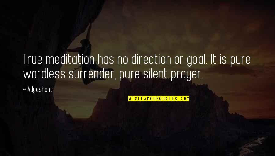 Catching Waves Quotes By Adyashanti: True meditation has no direction or goal. It