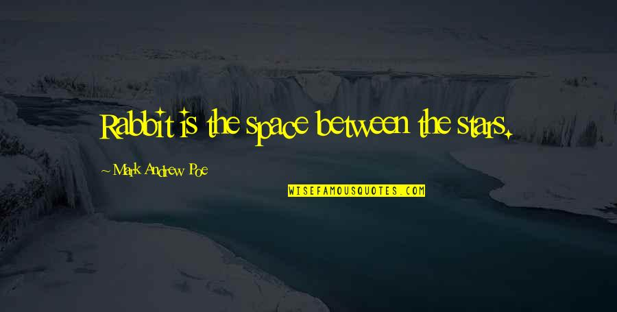 Catchy Pro Life Quotes By Mark Andrew Poe: Rabbit is the space between the stars.