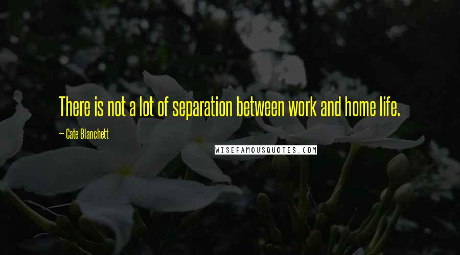 Cate Blanchett quotes: There is not a lot of separation between work and home life.