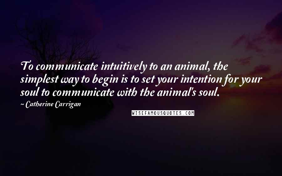 Catherine Carrigan quotes: To communicate intuitively to an animal, the simplest way to begin is to set your intention for your soul to communicate with the animal's soul.