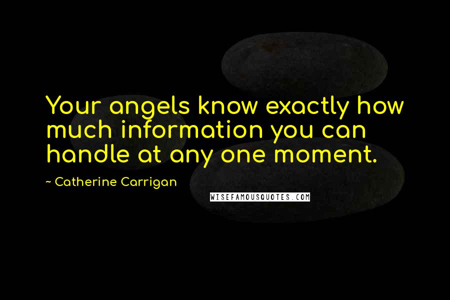 Catherine Carrigan quotes: Your angels know exactly how much information you can handle at any one moment.