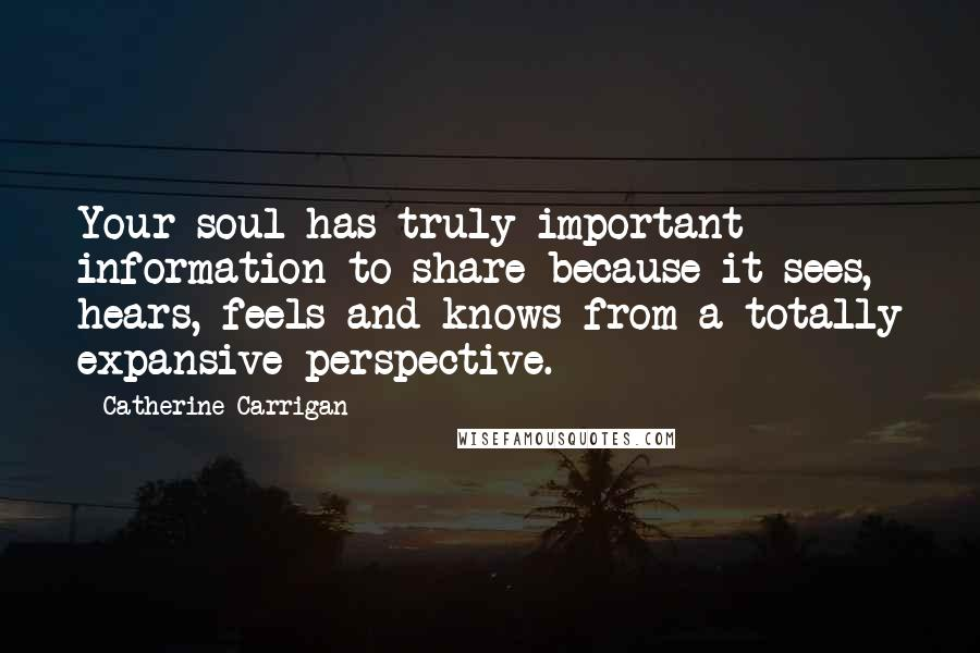 Catherine Carrigan quotes: Your soul has truly important information to share because it sees, hears, feels and knows from a totally expansive perspective.
