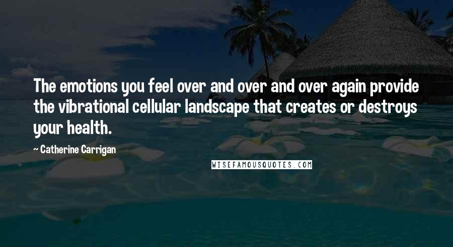 Catherine Carrigan quotes: The emotions you feel over and over and over again provide the vibrational cellular landscape that creates or destroys your health.