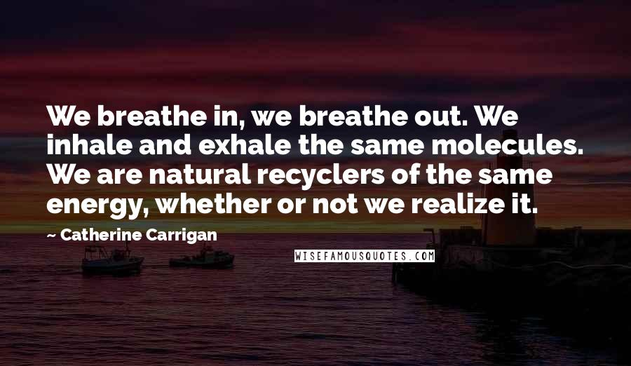 Catherine Carrigan quotes: We breathe in, we breathe out. We inhale and exhale the same molecules. We are natural recyclers of the same energy, whether or not we realize it.
