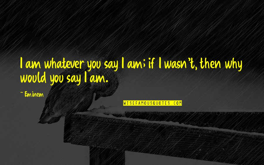 Catherine Devrye Quotes By Eminem: I am whatever you say I am; if