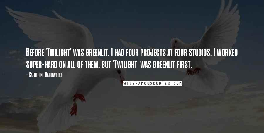 Catherine Hardwicke quotes: Before 'Twilight' was greenlit, I had four projects at four studios. I worked super-hard on all of them, but 'Twilight' was greenlit first.