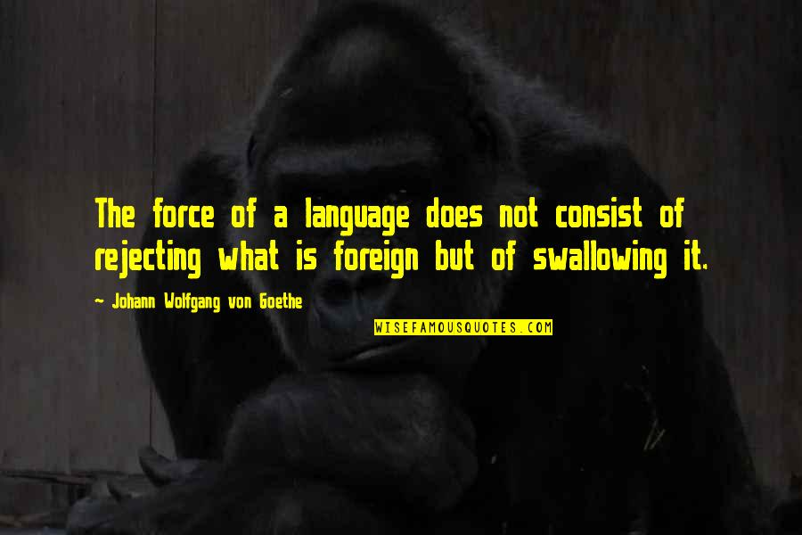 Cathy Horyn Quotes By Johann Wolfgang Von Goethe: The force of a language does not consist