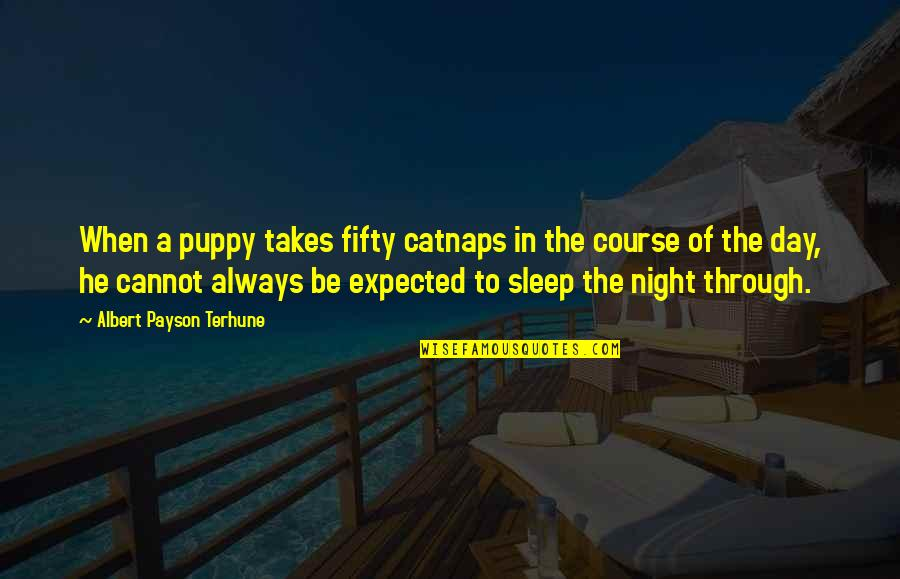 Catnaps Quotes By Albert Payson Terhune: When a puppy takes fifty catnaps in the