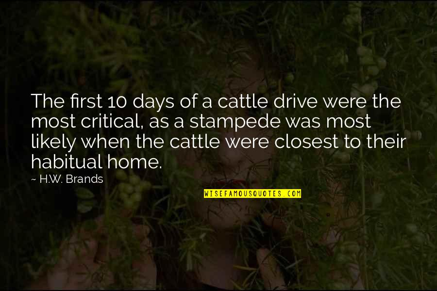Cattle Drive Quotes By H.W. Brands: The first 10 days of a cattle drive