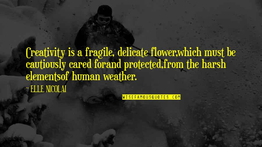 Cautiously Quotes By ELLE NICOLAI: Creativity is a fragile, delicate flower,which must be