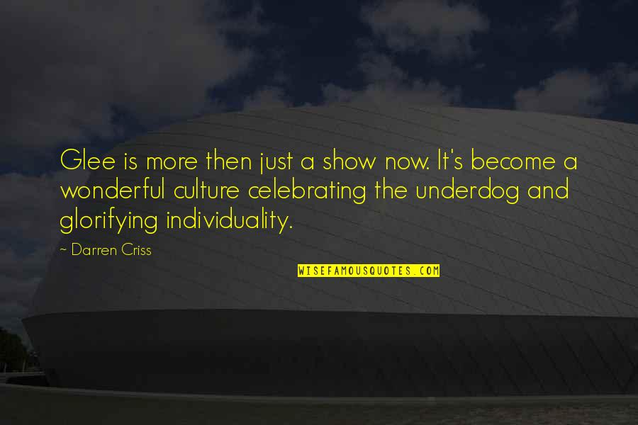 Celebrating Culture Quotes By Darren Criss: Glee is more then just a show now.