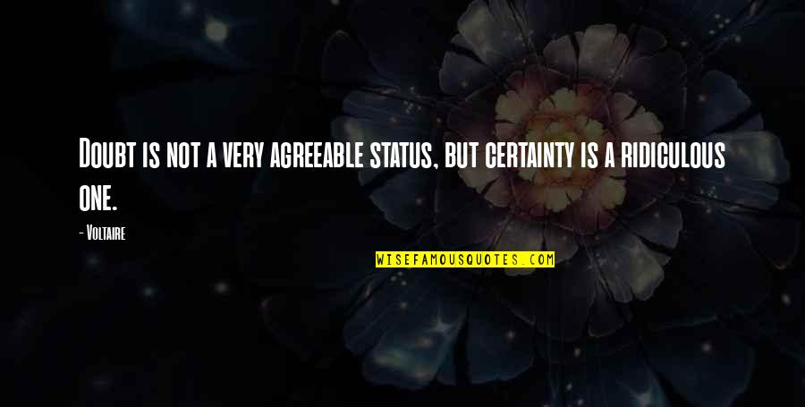 Certainty And Doubt Quotes By Voltaire: Doubt is not a very agreeable status, but
