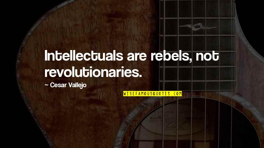 Cesar Vallejo Quotes By Cesar Vallejo: Intellectuals are rebels, not revolutionaries.
