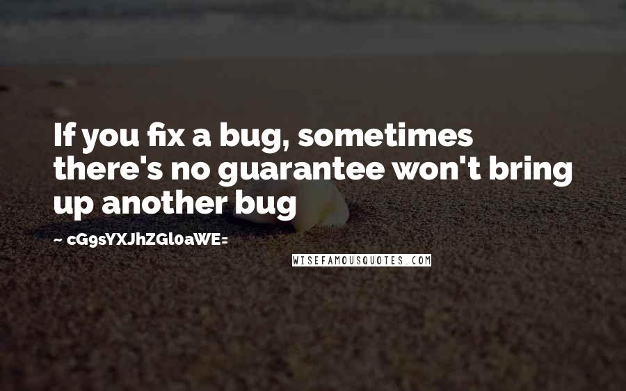 CG9sYXJhZGl0aWE= quotes: If you fix a bug, sometimes there's no guarantee won't bring up another bug