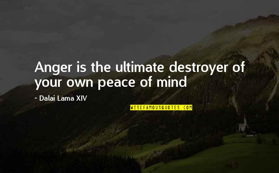 Chadian Quotes By Dalai Lama XIV: Anger is the ultimate destroyer of your own