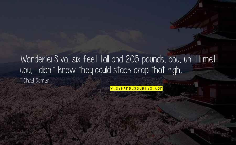 Chael Sonnen Wanderlei Silva Quotes By Chael Sonnen: Wanderlei Silva, six feet tall and 205 pounds,