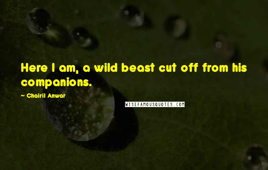 Chairil Anwar quotes: Here I am, a wild beast cut off from his companions.