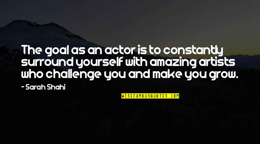 Challenge Yourself Quotes By Sarah Shahi: The goal as an actor is to constantly