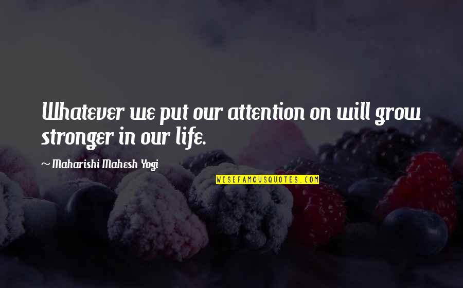 Chandon Quotes By Maharishi Mahesh Yogi: Whatever we put our attention on will grow