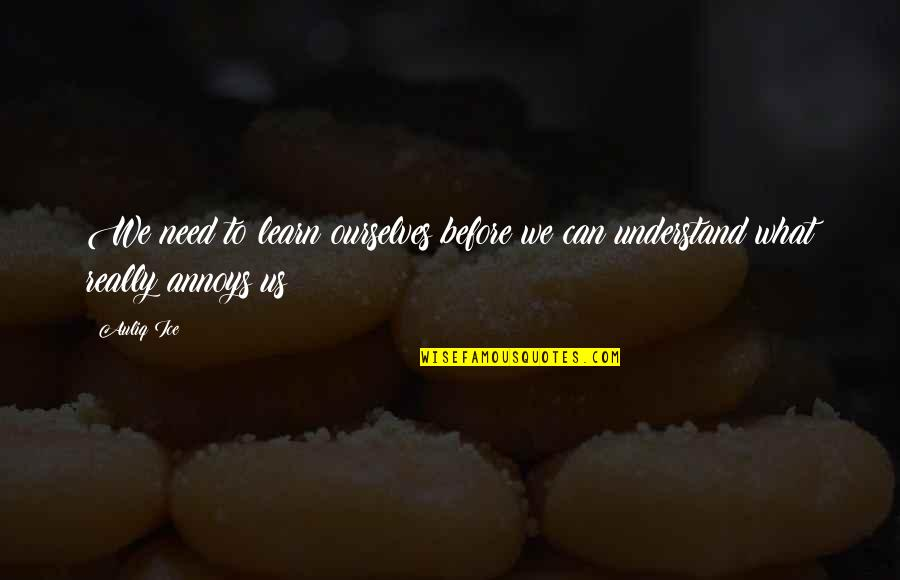 Change And Mistakes Quotes By Auliq Ice: We need to learn ourselves before we can