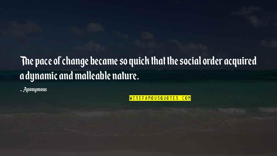 Change Anonymous Quotes By Anonymous: The pace of change became so quick that