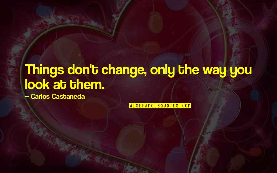 Change My Look Quotes By Carlos Castaneda: Things don't change, only the way you look