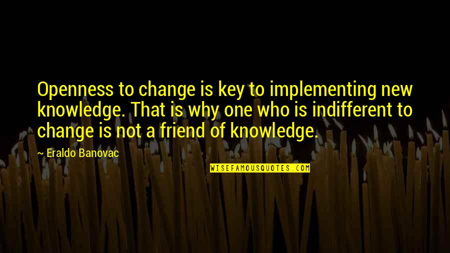 Change Philosophy Quotes By Eraldo Banovac: Openness to change is key to implementing new