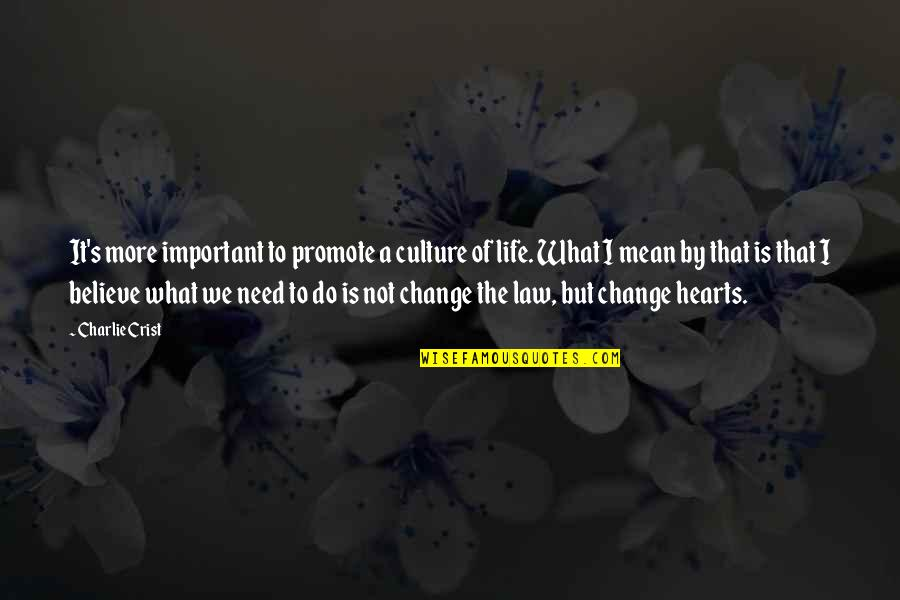 Change The Culture Quotes By Charlie Crist: It's more important to promote a culture of