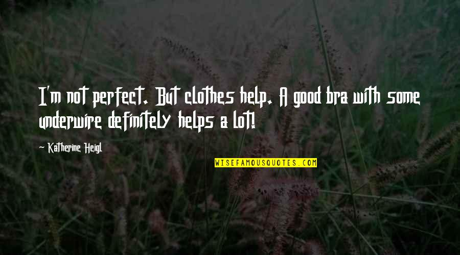 Changing Your State Of Mind Quotes By Katherine Heigl: I'm not perfect. But clothes help. A good