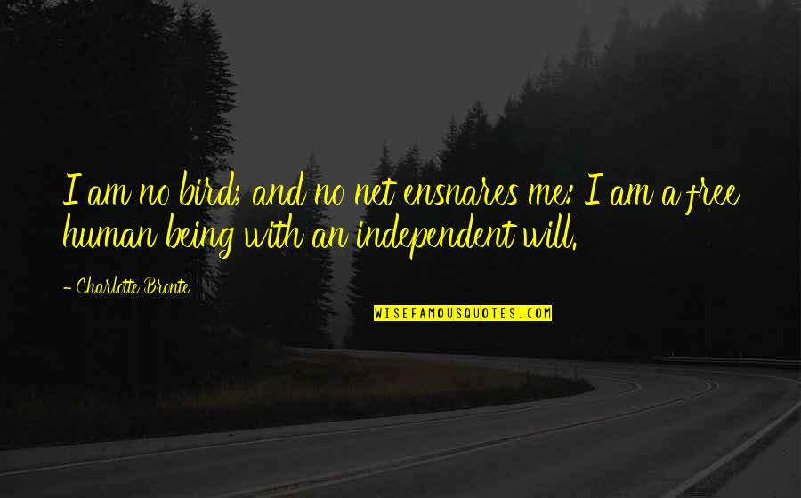 Character Flaws Quotes By Charlotte Bronte: I am no bird; and no net ensnares