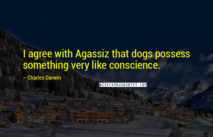 Charles Darwin quotes: I agree with Agassiz that dogs possess something very like conscience.