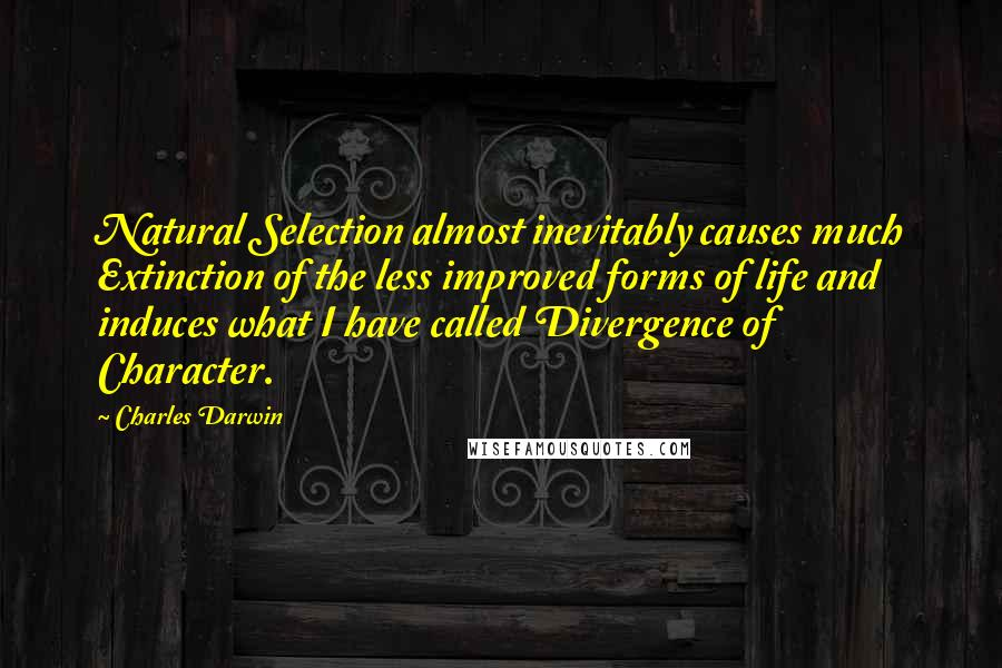 Charles Darwin quotes: Natural Selection almost inevitably causes much Extinction of the less improved forms of life and induces what I have called Divergence of Character.