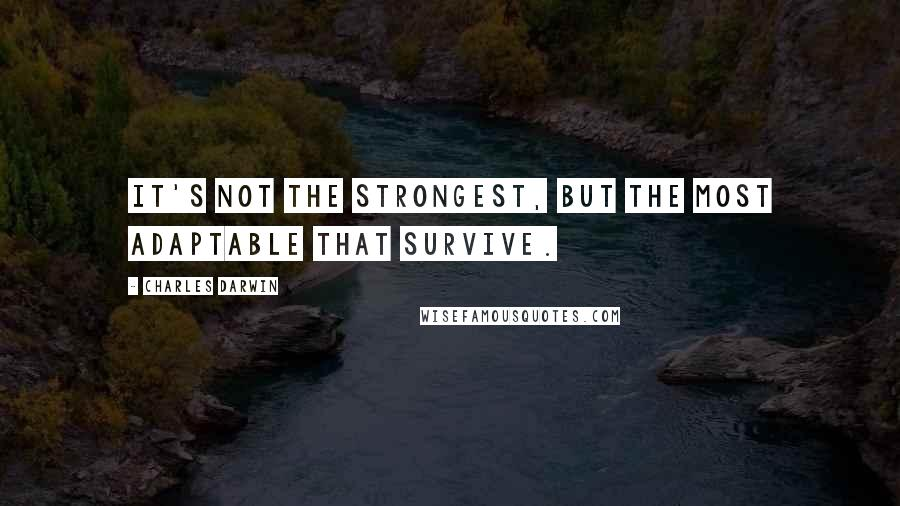 Charles Darwin quotes: It's not the strongest, but the most adaptable that survive.
