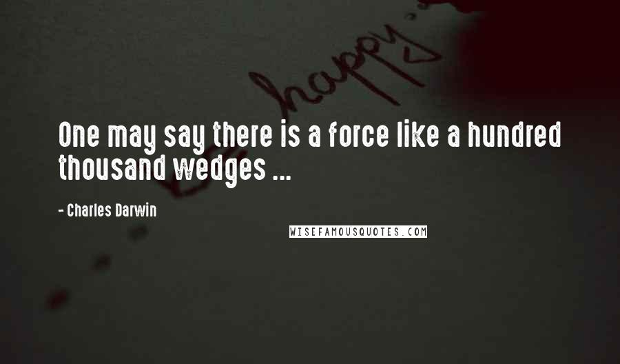 Charles Darwin quotes: One may say there is a force like a hundred thousand wedges ...