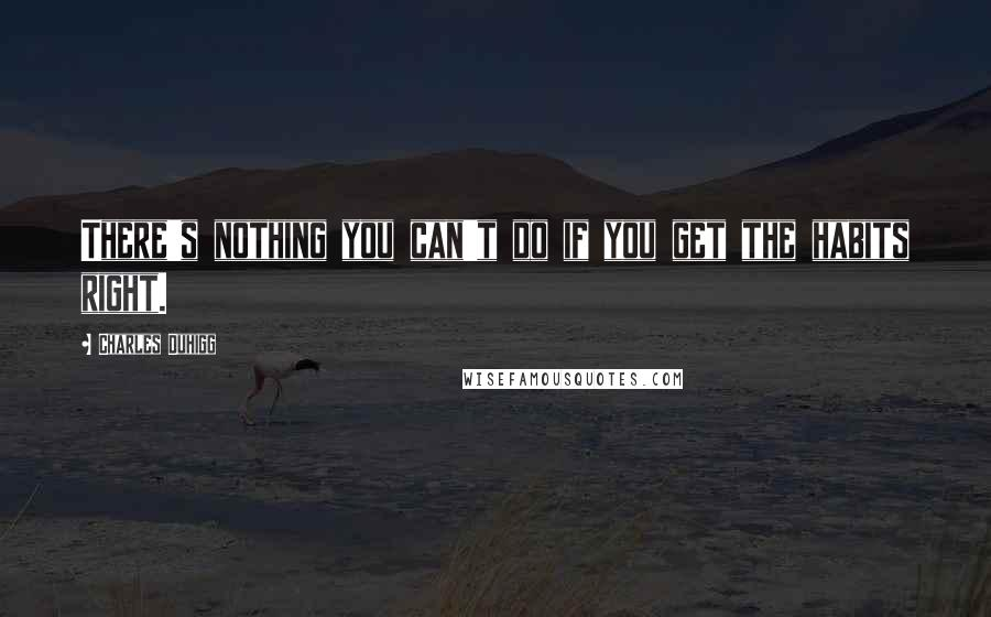 Charles Duhigg quotes: There's nothing you can't do if you get the habits right.